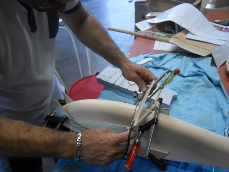 Planeur Fish P9270014