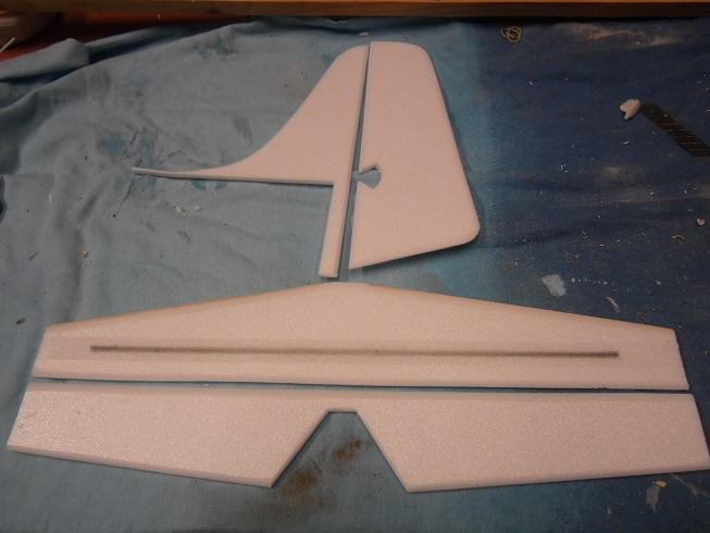 Planeur Fish P9290014