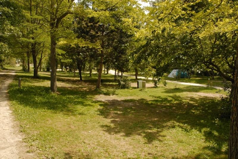 Camping Sites et Paysages la Source du Jabron  _dsc0413