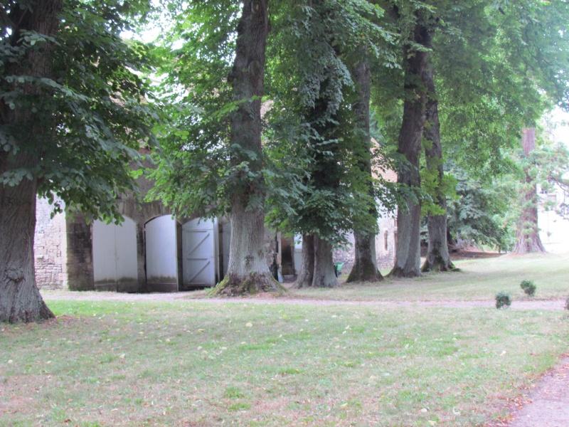Le Château de Thaon, un petit coin de paradis Img_0080