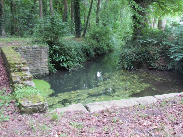 Le Château de Thaon, un petit coin de paradis Img_0085