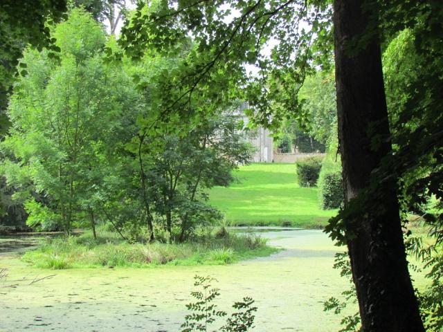 Le Château de Thaon, un petit coin de paradis Img_0088
