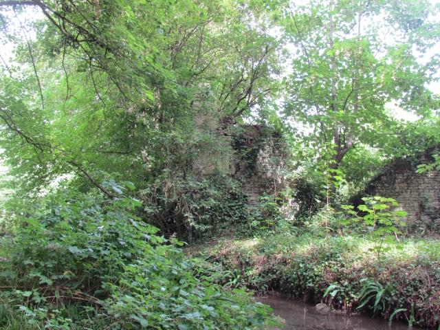Le Château de Thaon, un petit coin de paradis Img_0089