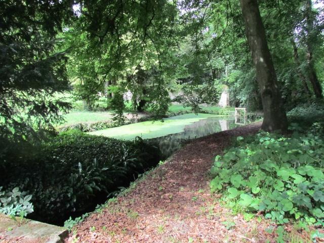 Le Château de Thaon, un petit coin de paradis Img_0093