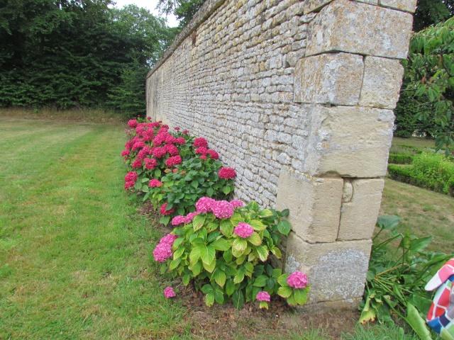 Le Château de Thaon, un petit coin de paradis Img_0105