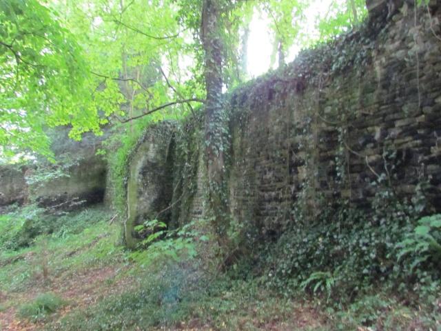 Le Château de Thaon, un petit coin de paradis Img_0106