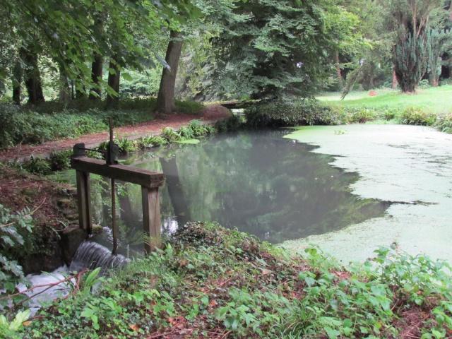 Le Château de Thaon, un petit coin de paradis Img_0108