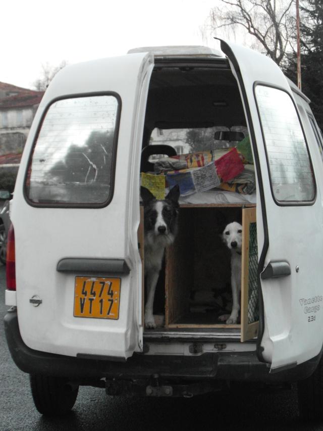 voiture - Installation voiture - Page 7 Sam_1110