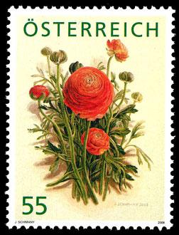 Heimische Blumen At278710