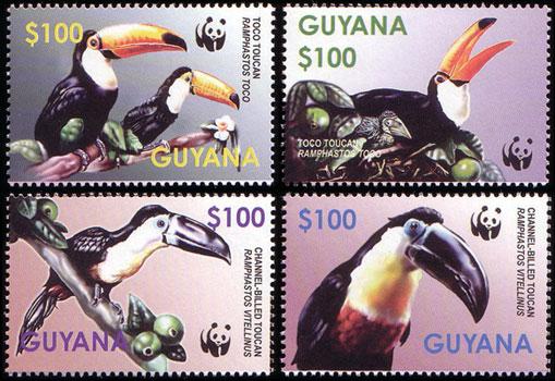 Vögel Gy762610