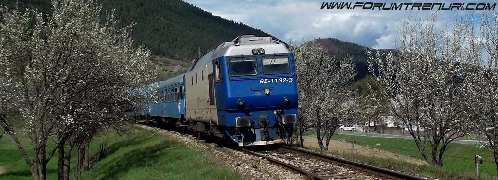 Forumul pasionatilor de trenuri din România