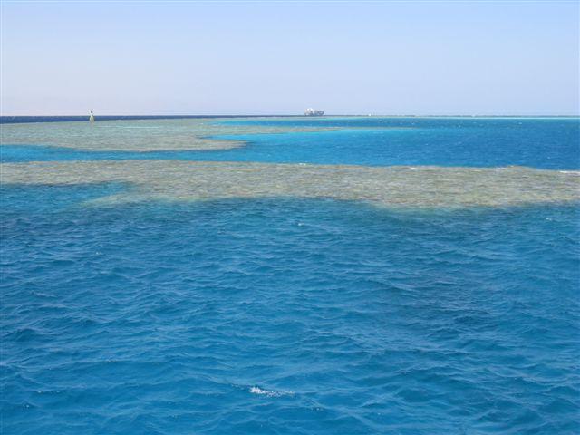 Sharm el Sheikh Novemb20