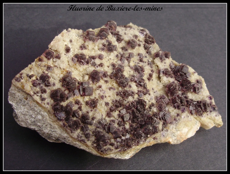 Buxieres-Les-Mines Buxiar11