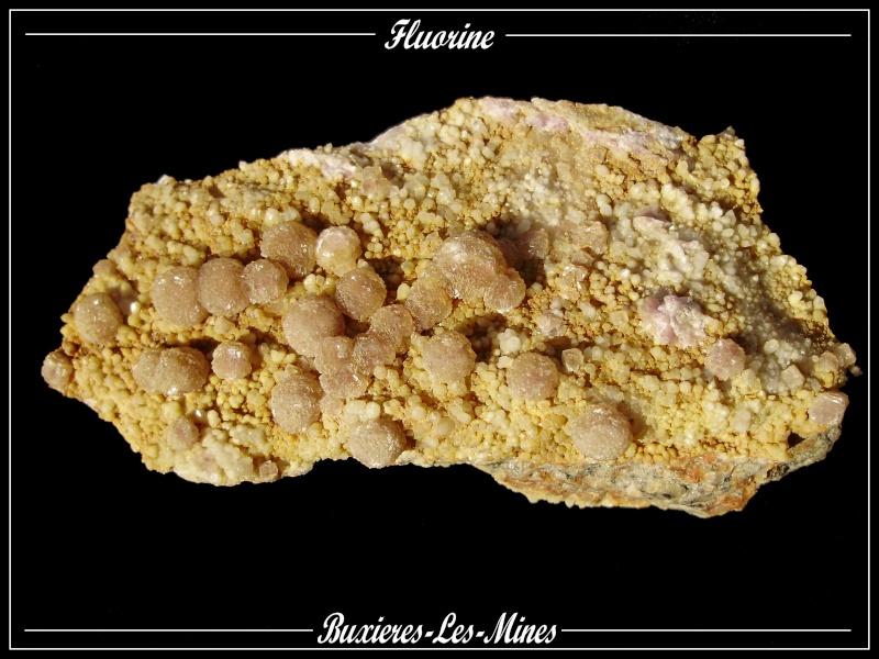 Buxieres-Les-Mines Fluo_013