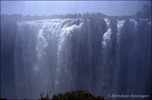 Merveilles de la nature. - Page 13 Zimbab10