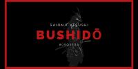Un dragón ruge - BÚSQUEDA  Bushid11