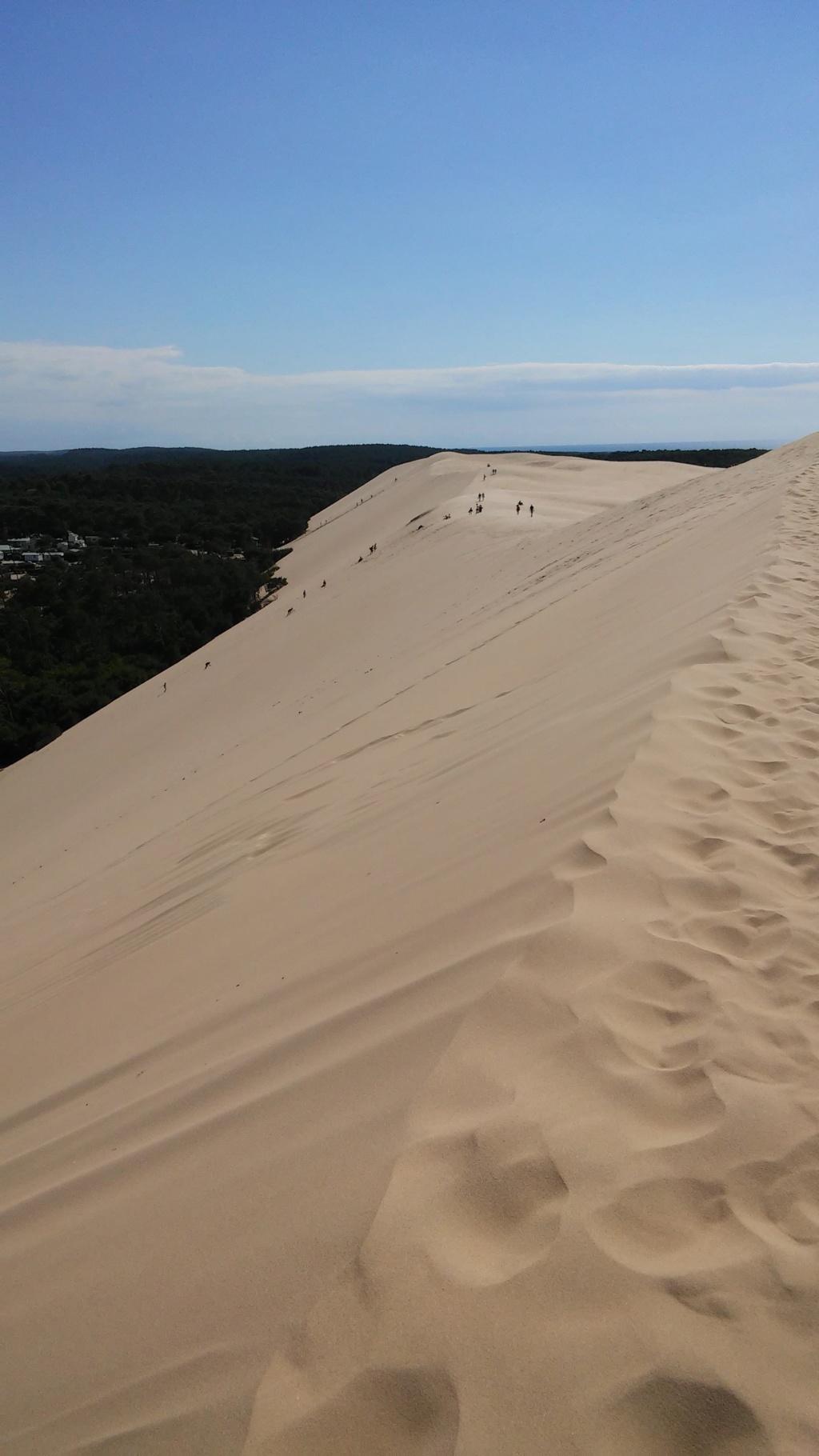 GRAVIR LA DUNE Dune_d10