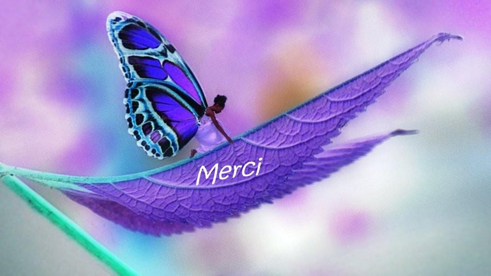 MERCI Renais10