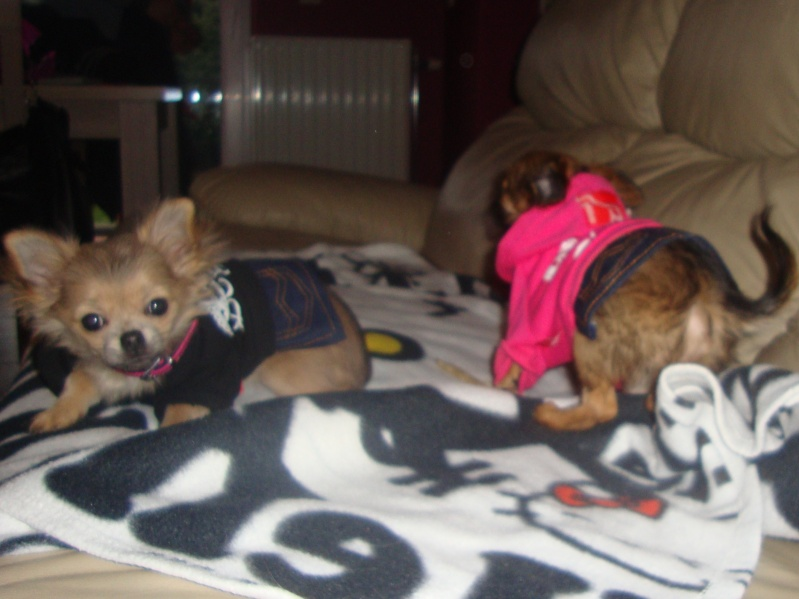 Petites robes pour Lilou et Zora Dsc01611