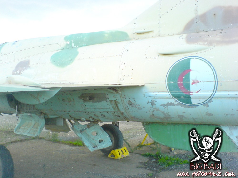 طائرة مقاتلة إعتراضية ميغ-21  MIG-21 Dsc02521