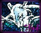 ~[ Galerie de Gobi & SHad ]~ Mewtwo15