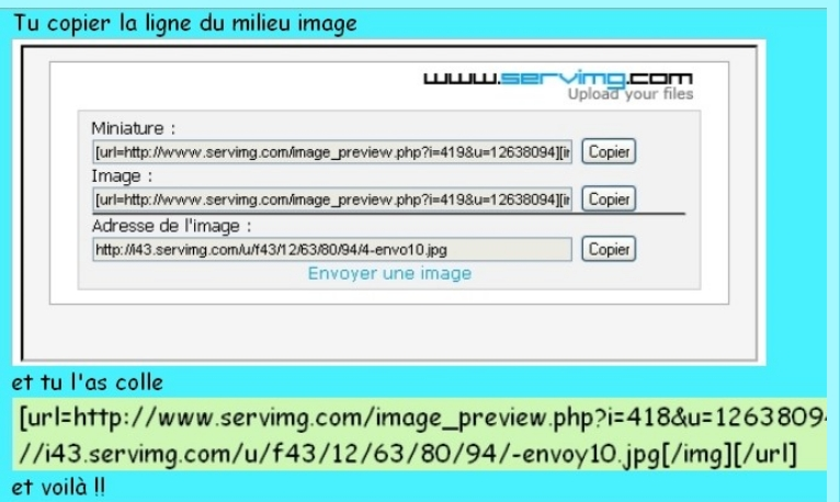 Comment poster une photo sur le forum 1-envo19