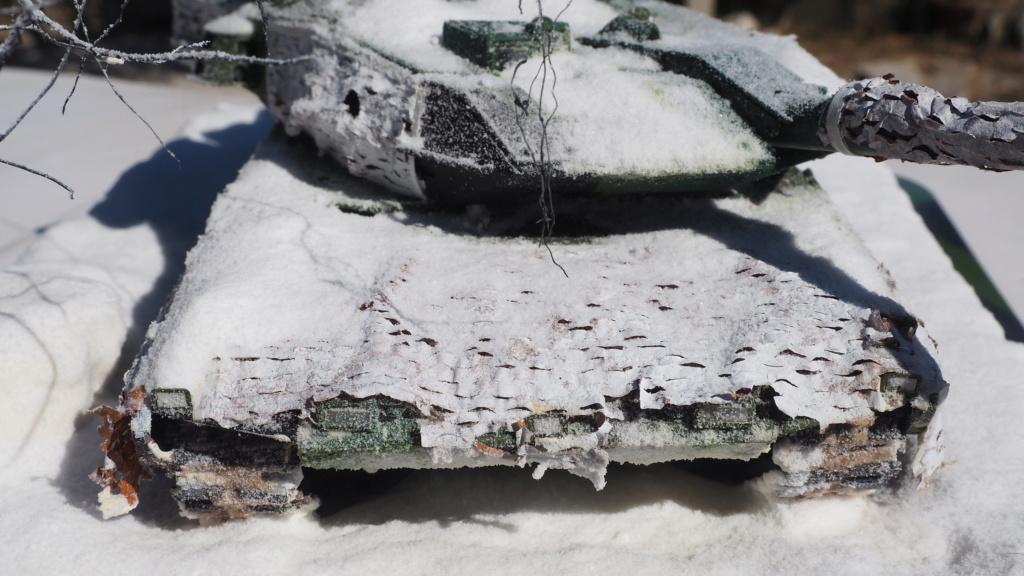 restauration du léopard STRV Pa010113