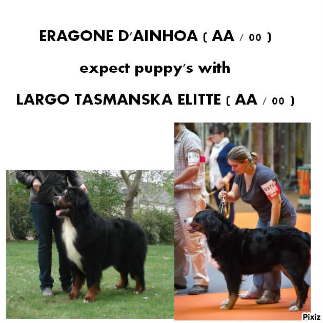mariage ERA et LARGO TASMANSKA ELITTE  Era_et10