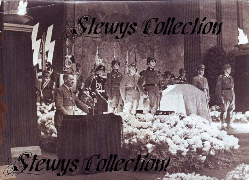 the Stewy collection Stewy_11
