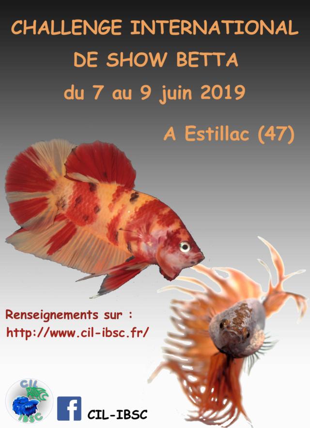 Challenge International 2019 Affich13