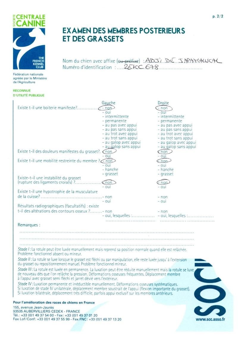 24e Portée de Ludsyga : Tora x Adji (29/04/13) - pour les maitres de Tora Certif12