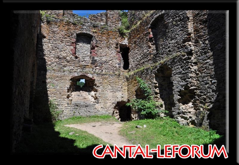 Ruines d'Alleuze Dsc_8512