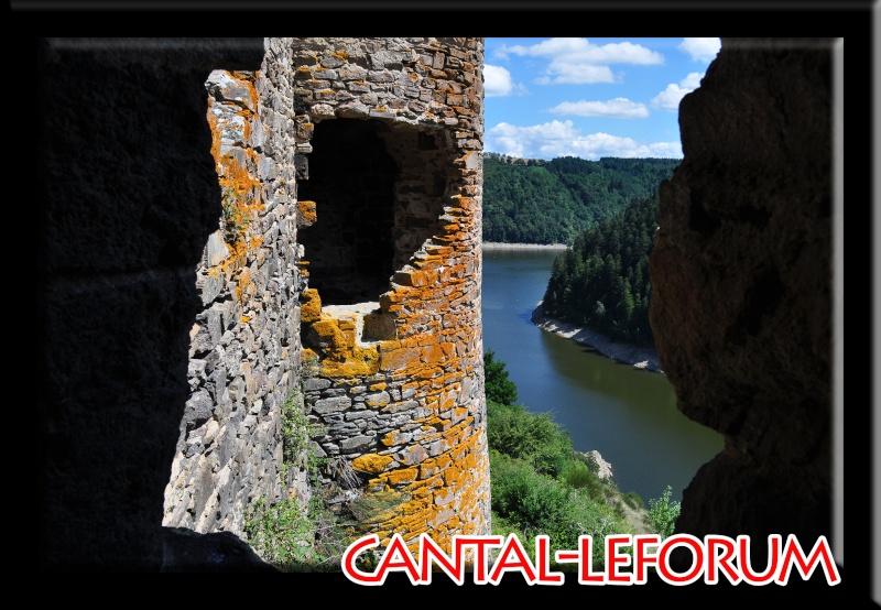 Ruines d'Alleuze Dsc_8513