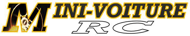 Vote concours de Logo Mini-Voiture-RC Minivo10