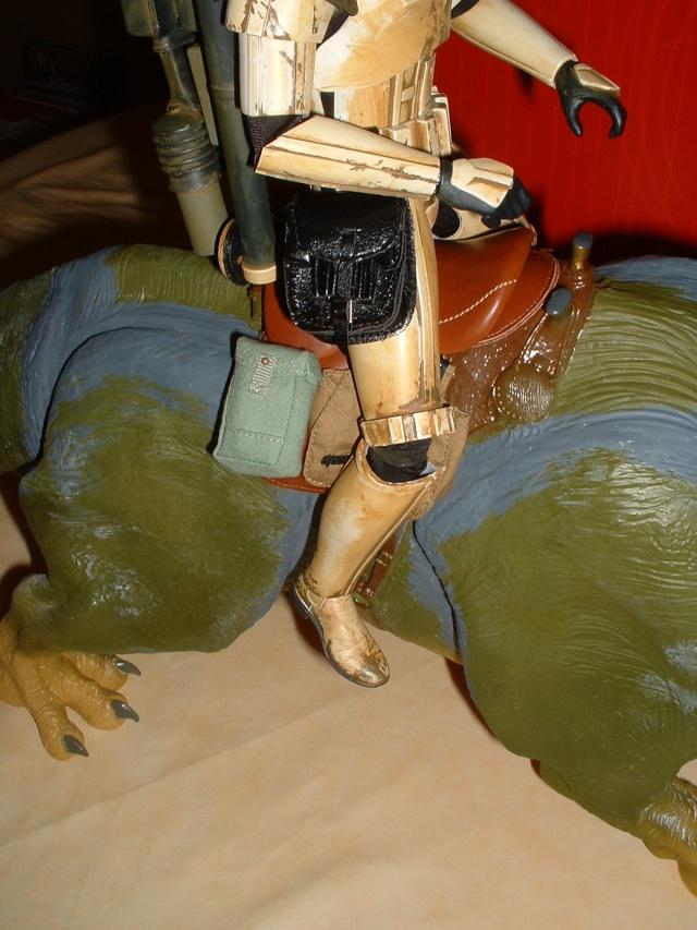 Dewback de Hasbro à Sideshow..... Dscf0023