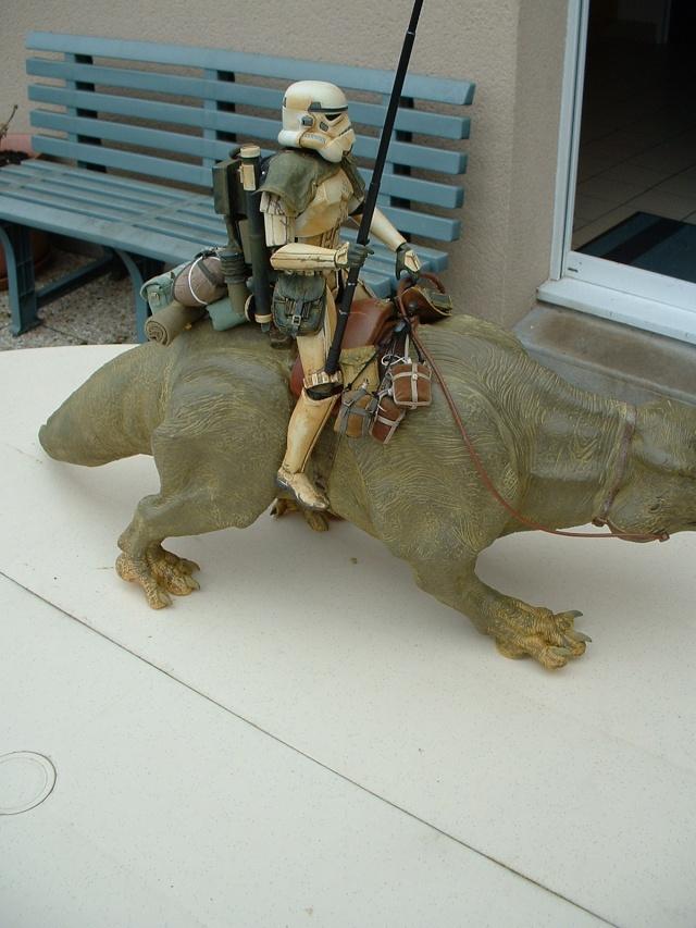 Dewback de Hasbro à Sideshow..... Dscf0090