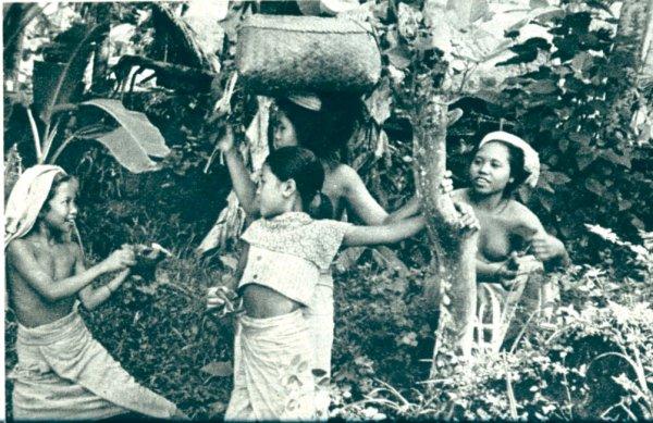 Foto's Kaat, Indonesië 50-er jaren Java_510