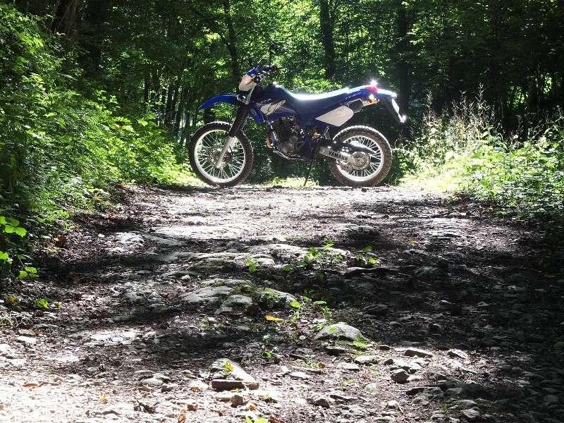 La CRF250L, la TTR 250, bref, les trails/enduro légers....quelqu'un a déjà essayé ? Et la Beta Alp 200cc....? - Page 5 Dscf4417