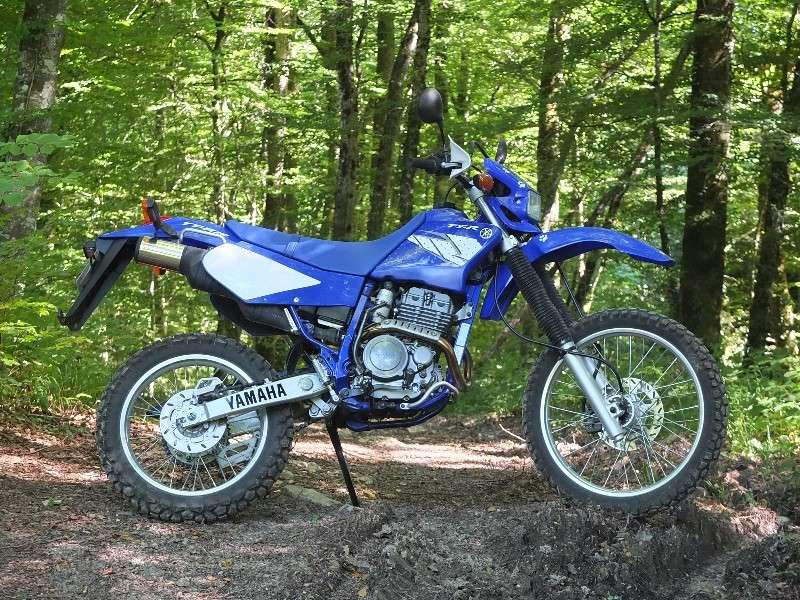 La CRF250L, la TTR 250, bref, les trails/enduro légers....quelqu'un a déjà essayé ? Et la Beta Alp 200cc....? - Page 5 Dscf4418