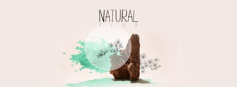 Natural Flux Bonsai Exhibition Illu_p10
