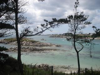 Le Jardin Georges Delaselle de l'ile de Batz !!! Dsc00013