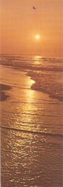 la mer et les marins - Page 4 024_1213
