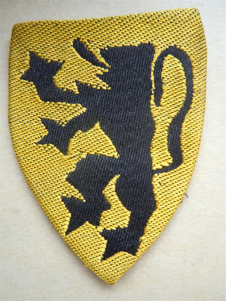 Insigne de nationalité :SS FLAMAND OFFICIER VLAMINGEN OP Dscn9915