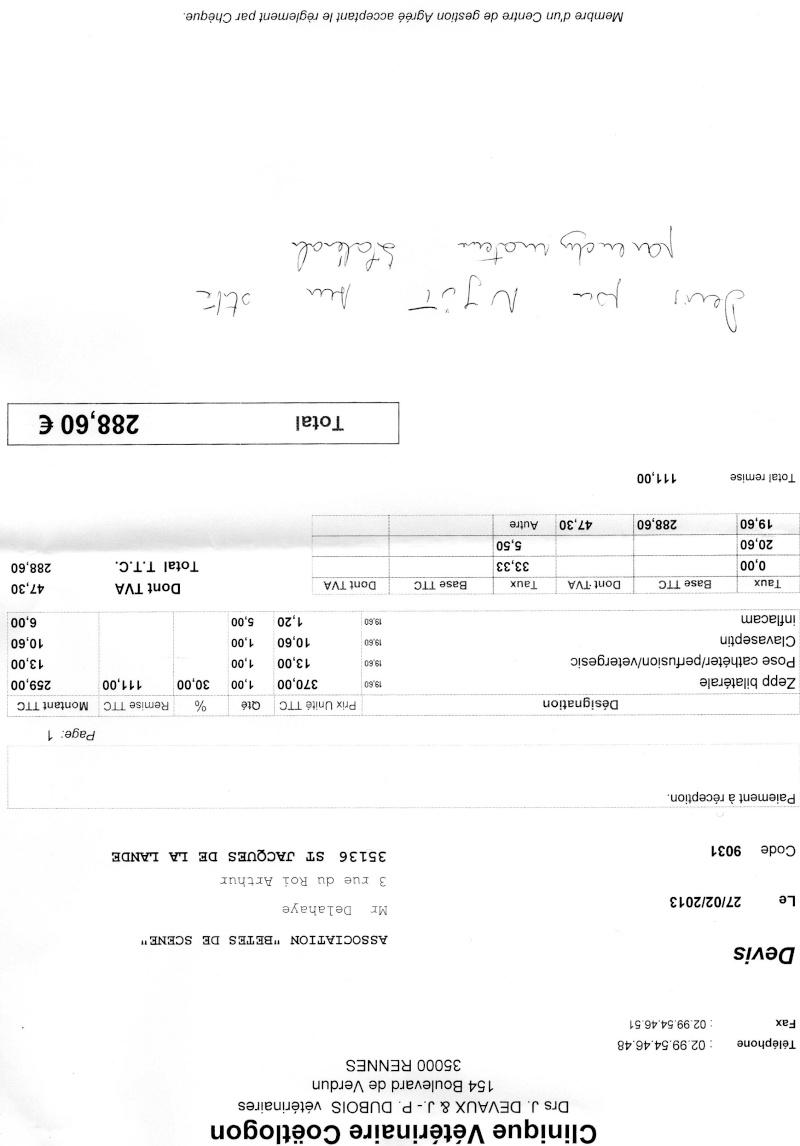 (Clos, merci à tous) Appel aux dons pour l'opération des oreilles de Njüt petit bichon Devis_10