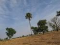 Imana. au Zenaga Img_0312