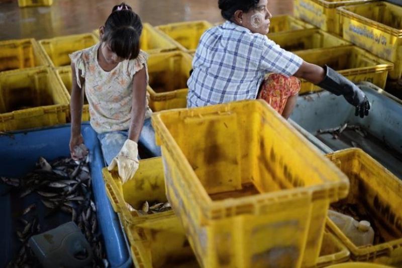 Des équipages d'esclaves sur les chalutiers thaïlandais 55256910