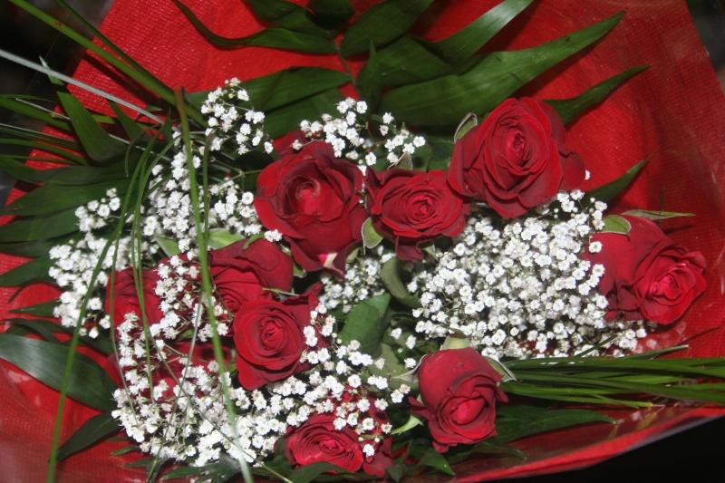 joyeux anniversaire aux 2 pattes  mars 2013 00112