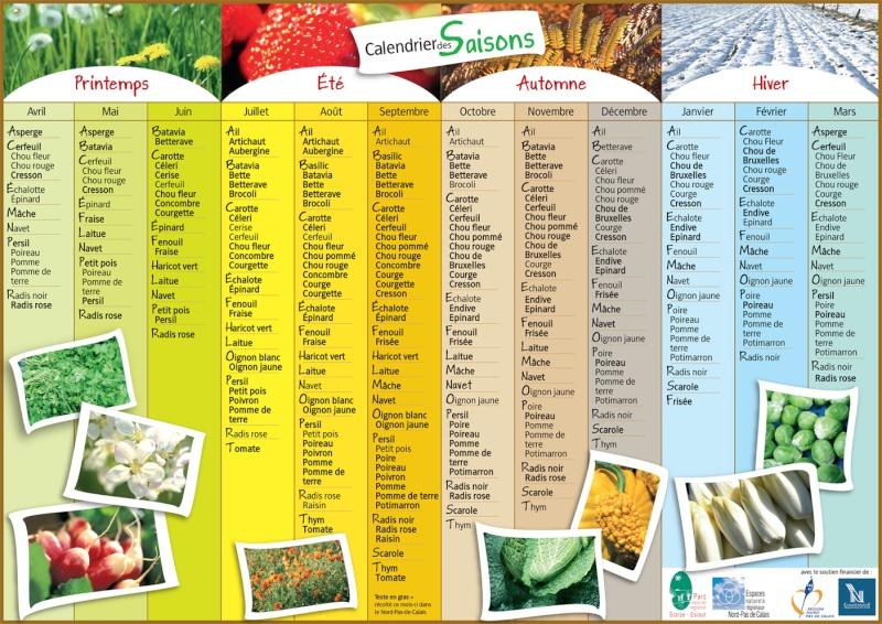Calendrier de semis des principales variétés potagères 115