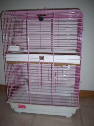 vend  cages news édité p.1 00112