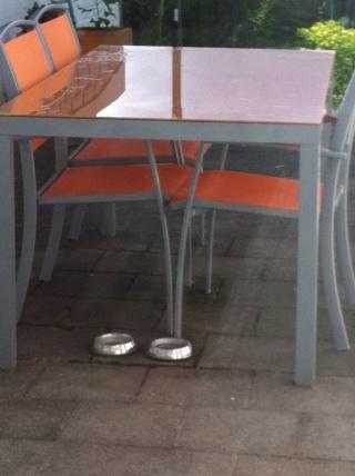 Sabri repeint sa cuisine (meuble de cuisine bleu) Img_6010